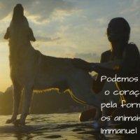 Podemos julgar o coração de um homem pela forma como ele trata os animais...