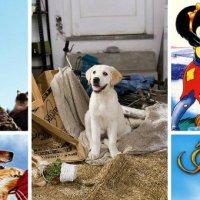 Top Filmes com cachorros!